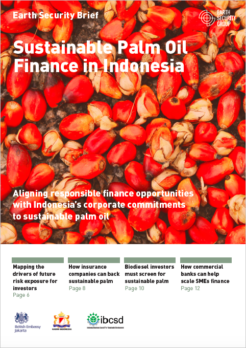 Sustainable palm oil finance in Indonesia