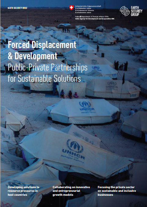 Strategy Brief - Forced Displacement Development